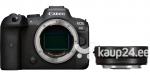 Canon EOS R6 Body + Mount Adapter EF-EOS R